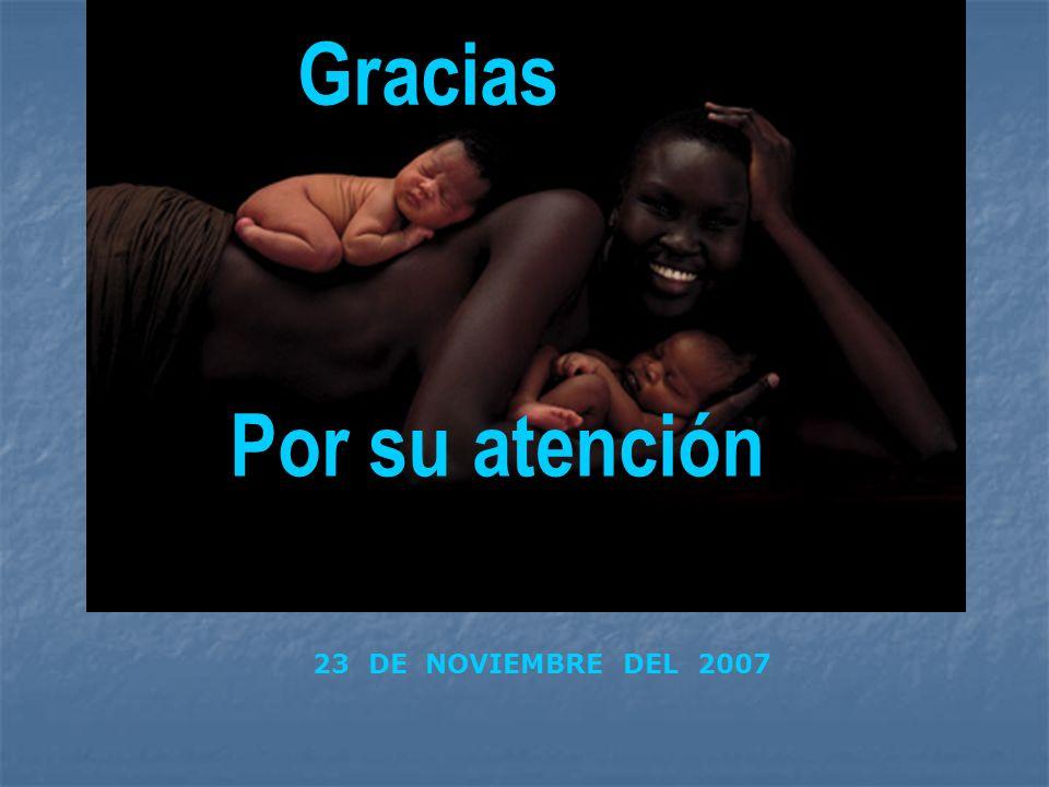 Gracias Por su atención 23 DE NOVIEMBRE DEL 2007