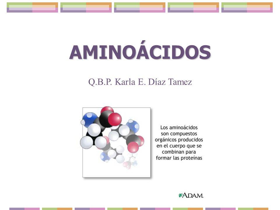 AMINOÁCIDOS Q.B.P. Karla E. Díaz Tamez