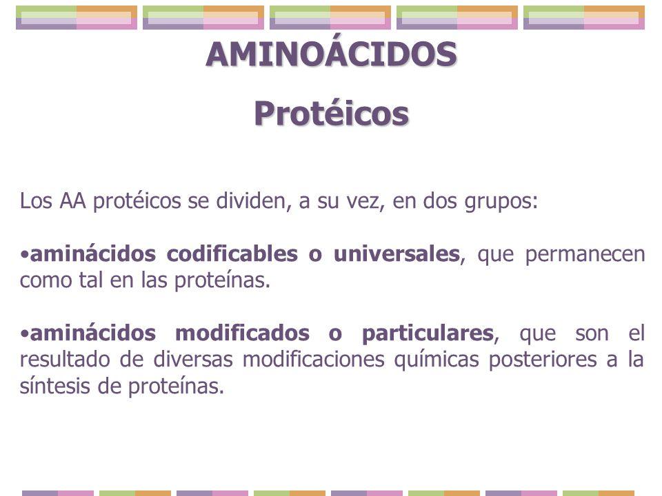 AMINOÁCIDOS Protéicos