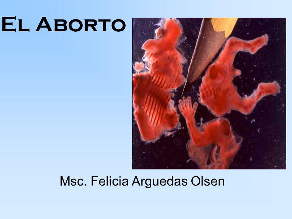 Msc. Felicia Arguedas Olsen