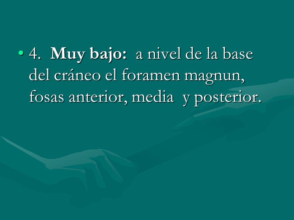 4. Muy bajo: a nivel de la base del cráneo el foramen magnun, fosas anterior, media y posterior.