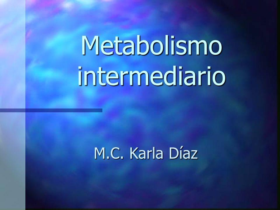 Metabolismo intermediario