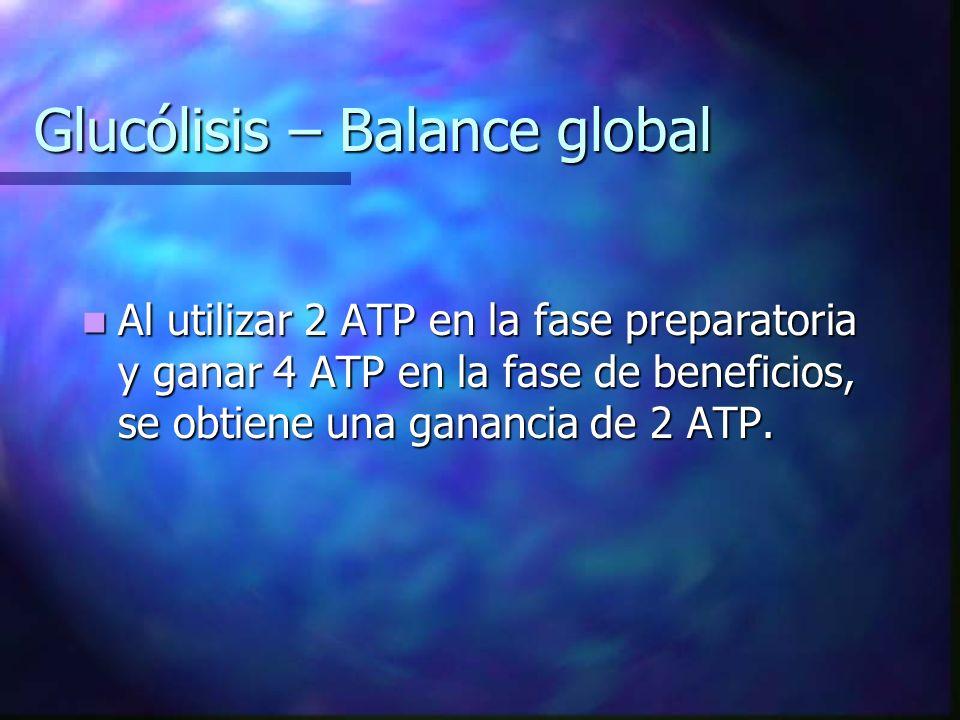 Glucólisis – Balance global