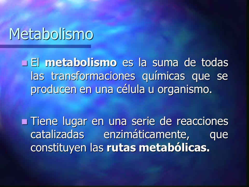 Metabolismo El metabolismo es la suma de todas las transformaciones químicas que se producen en una célula u organismo.