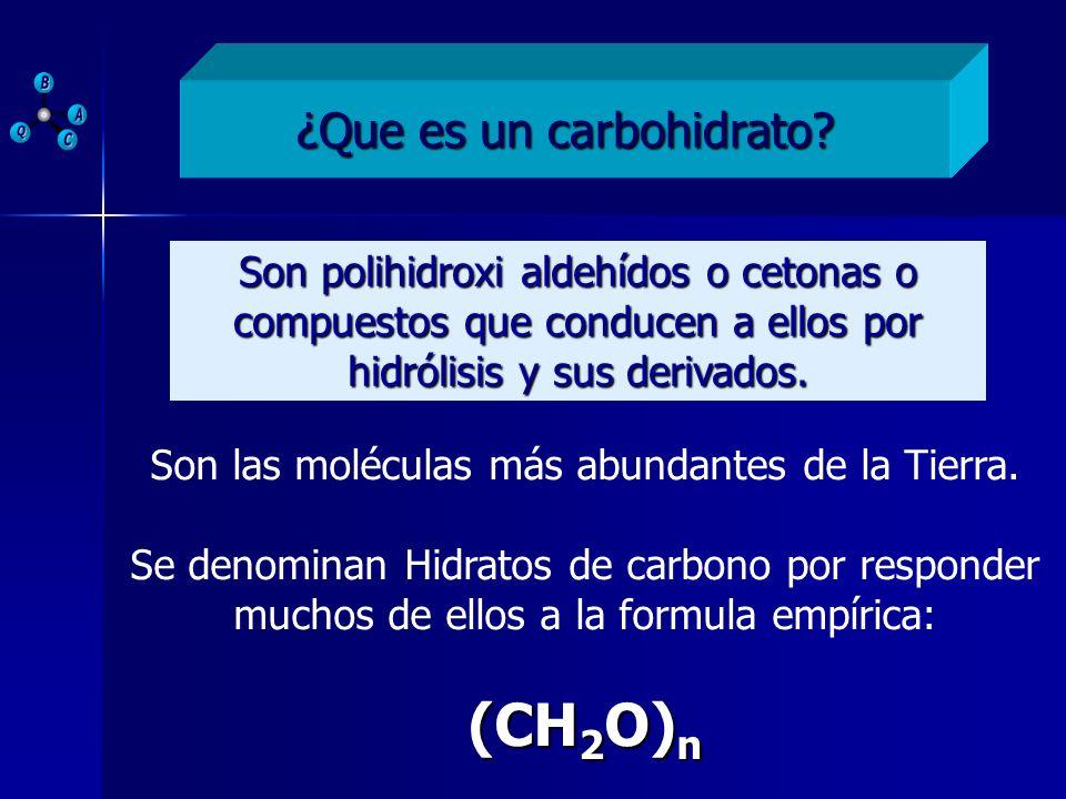 (CH2O)n ¿Que es un carbohidrato