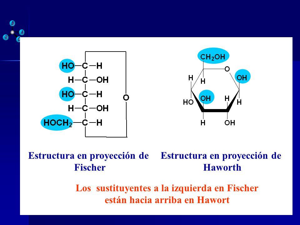 Estructura en proyección de Fischer Haworth