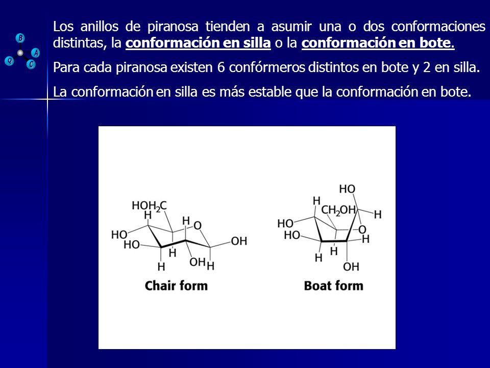Los anillos de piranosa tienden a asumir una o dos conformaciones distintas, la conformación en silla o la conformación en bote.