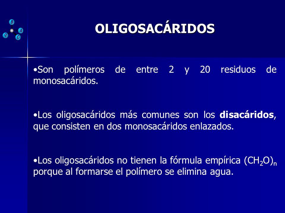 OLIGOSACÁRIDOSSon polímeros de entre 2 y 20 residuos de monosacáridos.