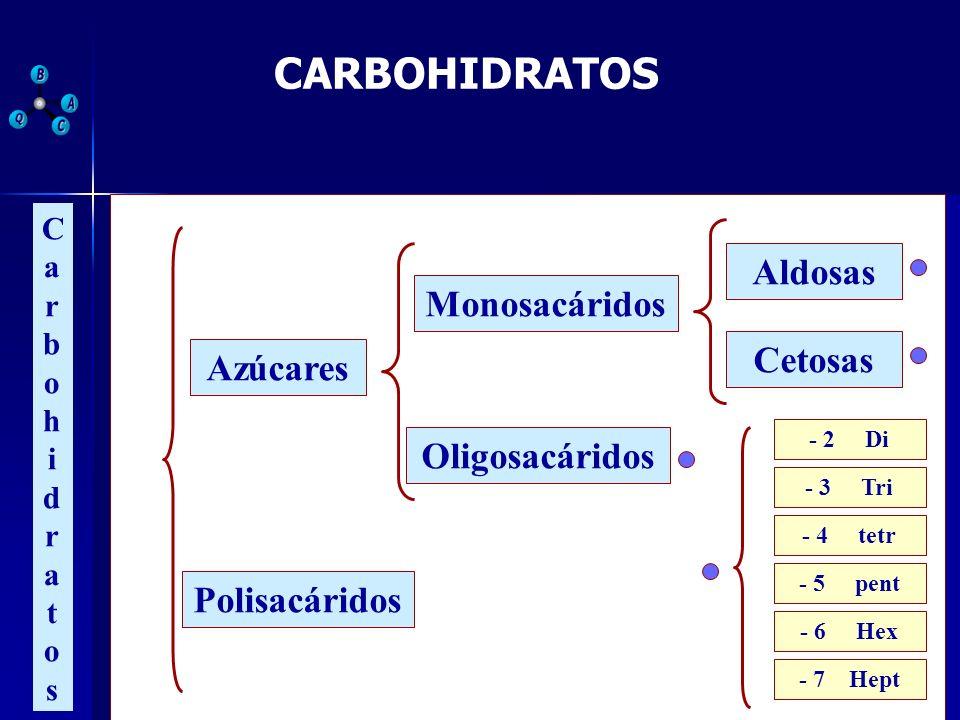 CARBOHIDRATOS Aldosas Monosacáridos Cetosas Azúcares Oligosacáridos