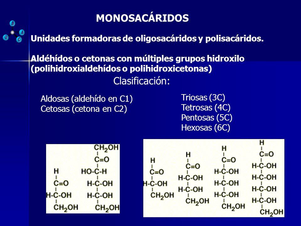 MONOSACÁRIDOS Clasificación: