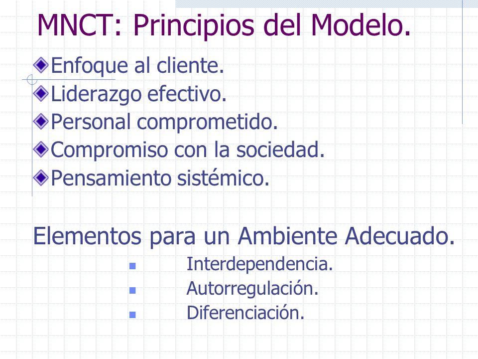 MNCT: Principios del Modelo.