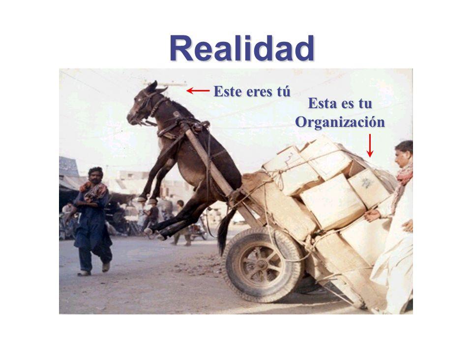 Esta es tu Organización