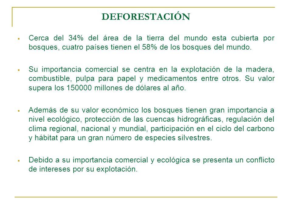 DEFORESTACIÓNCerca del 34% del área de la tierra del mundo esta cubierta por bosques, cuatro países tienen el 58% de los bosques del mundo.