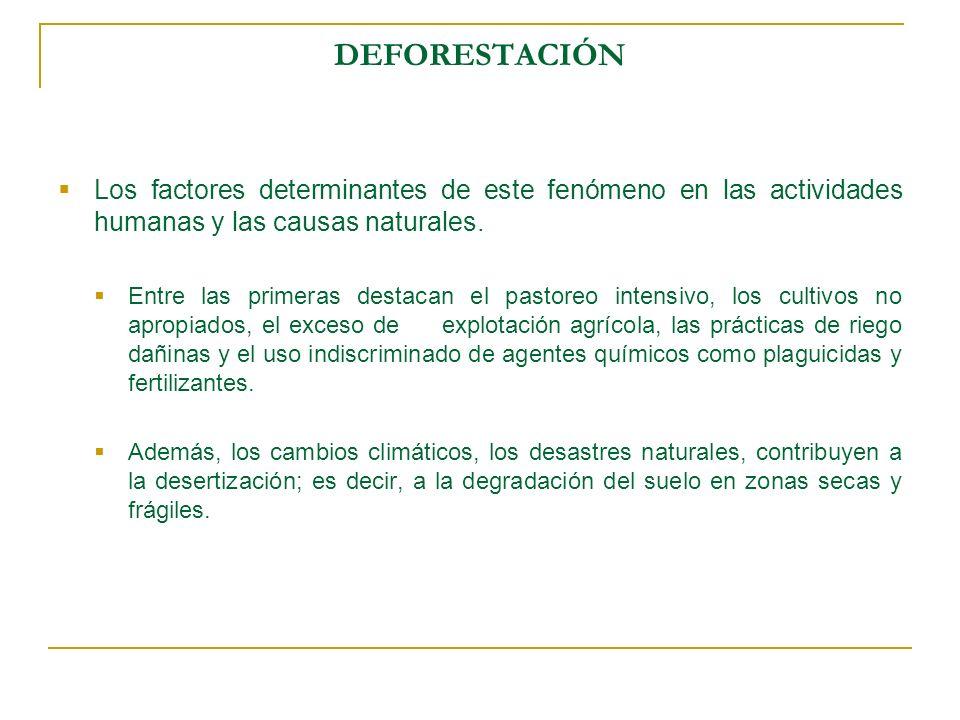 DEFORESTACIÓNLos factores determinantes de este fenómeno en las actividades humanas y las causas naturales.