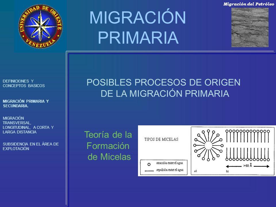 MIGRACIÓN PRIMARIA POSIBLES PROCESOS DE ORIGEN