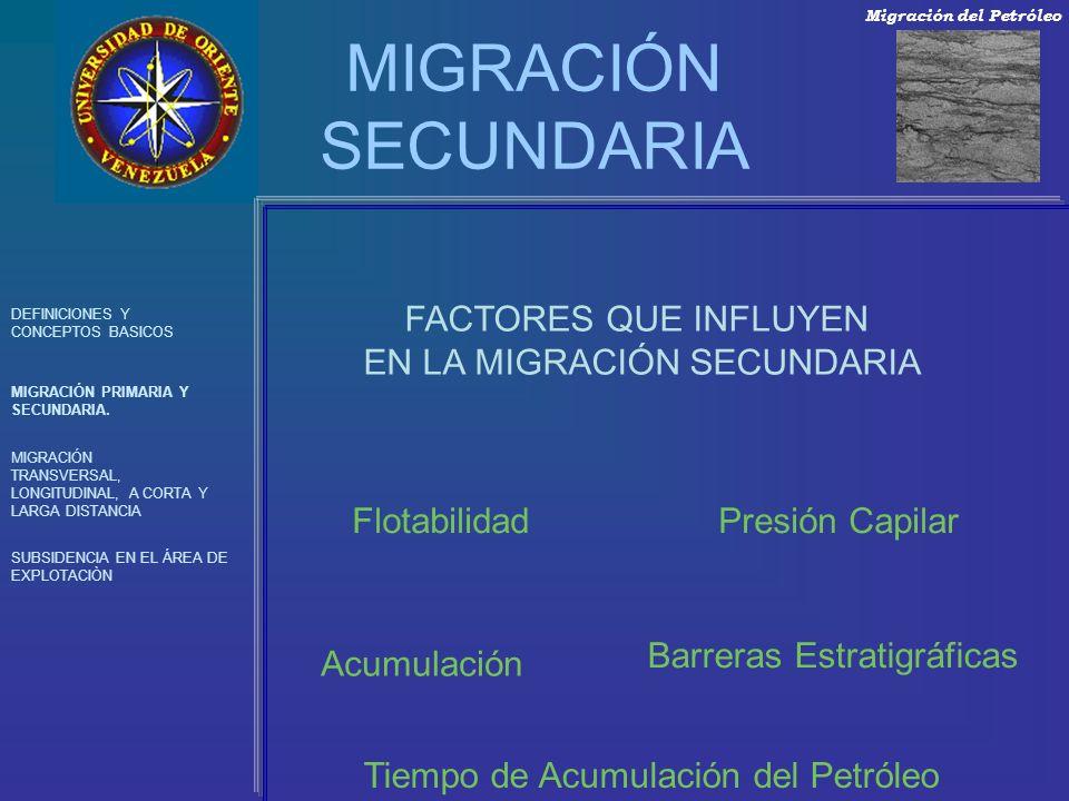 MIGRACIÓN SECUNDARIA FACTORES QUE INFLUYEN EN LA MIGRACIÓN SECUNDARIA