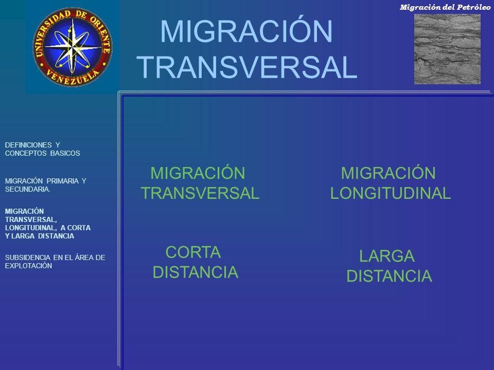 MIGRACIÓN TRANSVERSAL