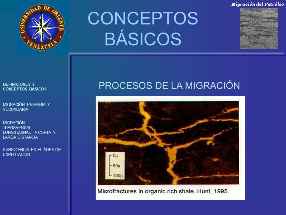 PROCESOS DE LA MIGRACIÓN