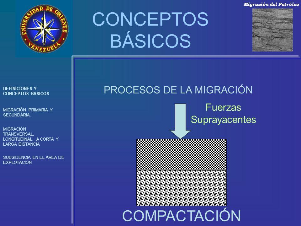 CONCEPTOS BÁSICOS COMPACTACIÓN PROCESOS DE LA MIGRACIÓN