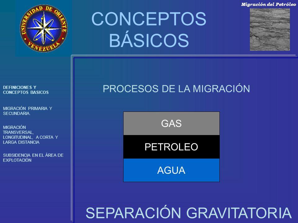 CONCEPTOS BÁSICOS SEPARACIÓN GRAVITATORIA PROCESOS DE LA MIGRACIÓN GAS