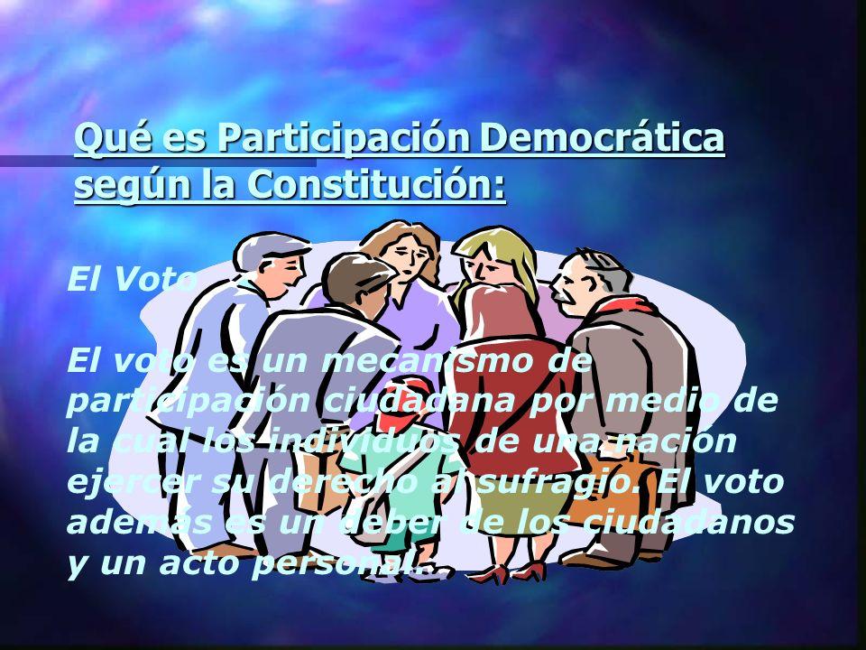 Qué es Participación Democrática según la Constitución:
