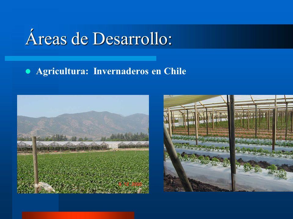 Áreas de Desarrollo: Agricultura: Invernaderos en Chile