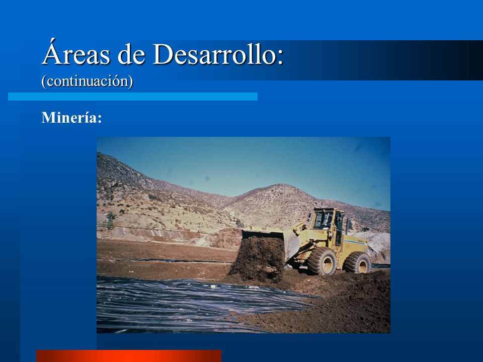 Áreas de Desarrollo: (continuación)