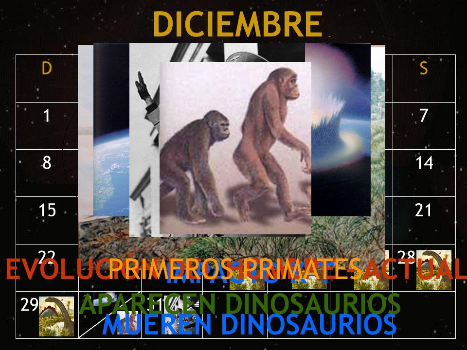 DICIEMBRE EVOLUCIÓN DEL HOMBRE - ACTUAL APARECEN DINOSAURIOS