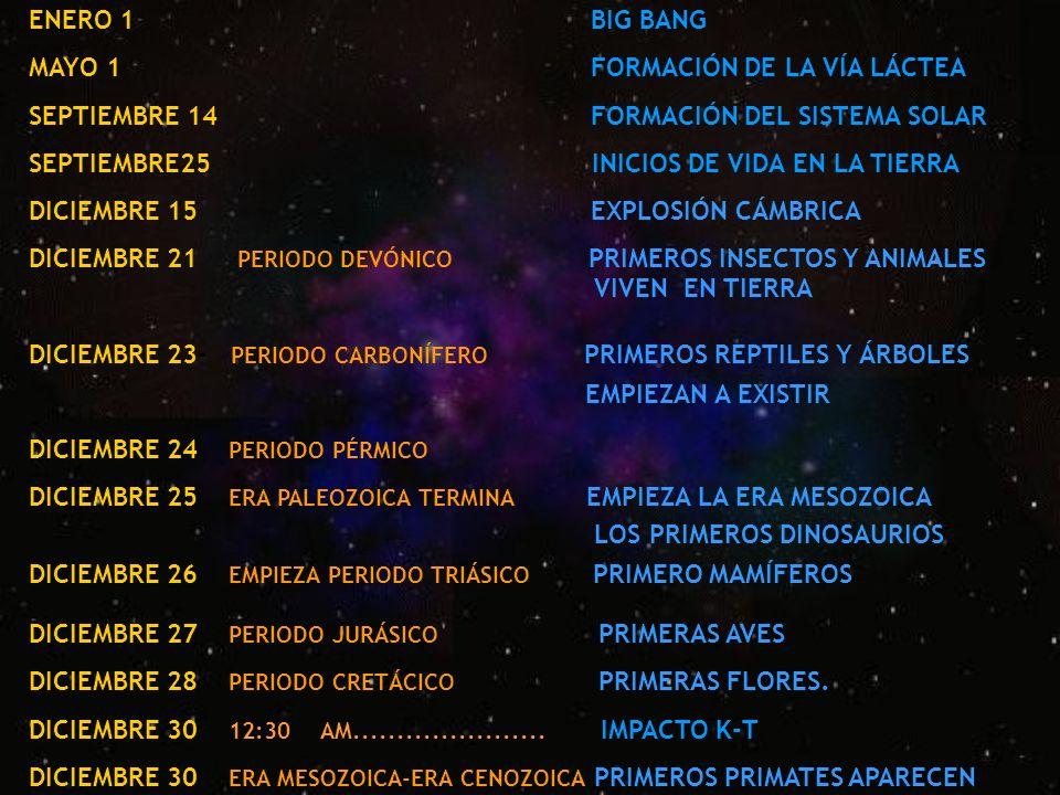 ENERO 1 BIG BANG MAYO 1 FORMACIÓN DE LA VÍA LÁCTEA. SEPTIEMBRE 14 FORMACIÓN DEL SISTEMA SOLAR.