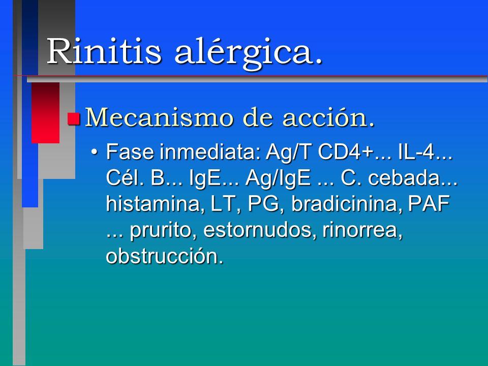 Rinitis alérgica. Mecanismo de acción.