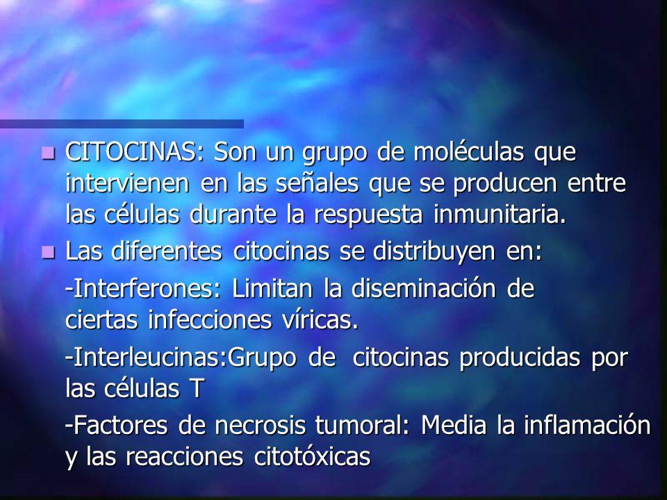 CITOCINAS: Son un grupo de moléculas que intervienen en las señales que se producen entre las células durante la respuesta inmunitaria.