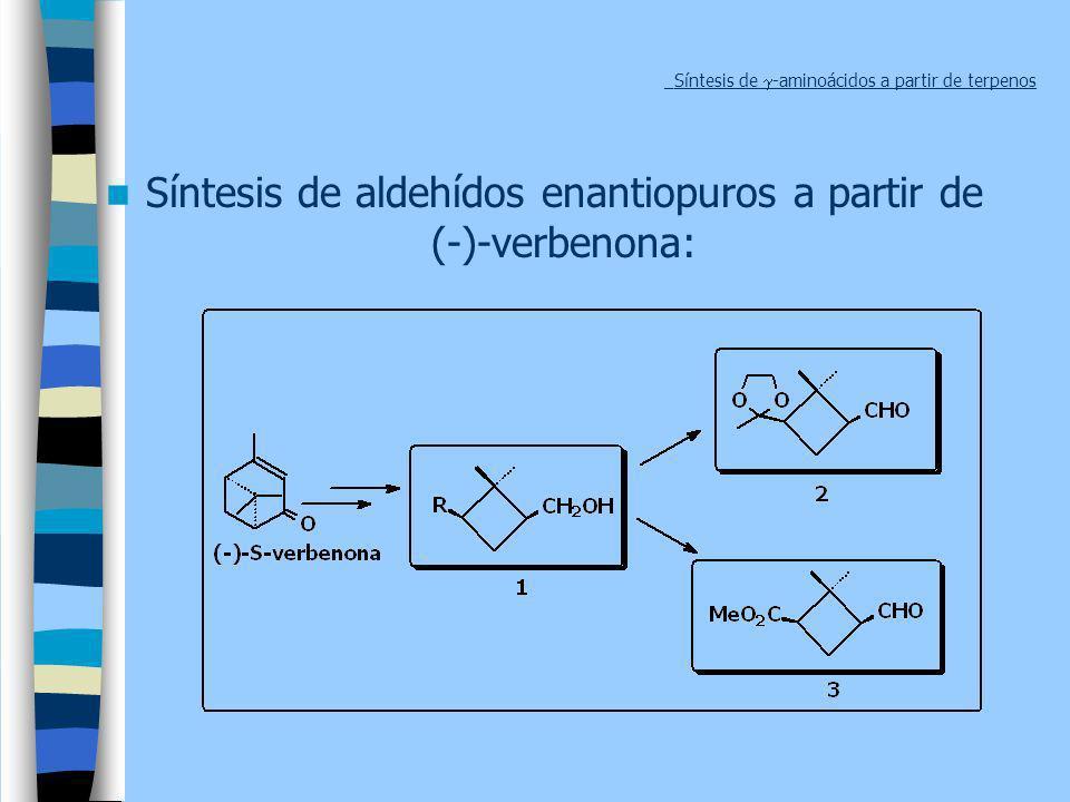 _Síntesis de g-aminoácidos a partir de terpenos