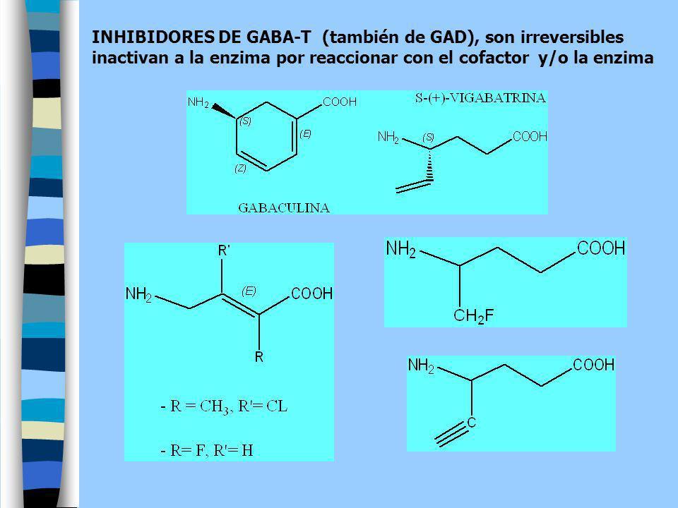 INHIBIDORES DE GABA-T (también de GAD), son irreversibles