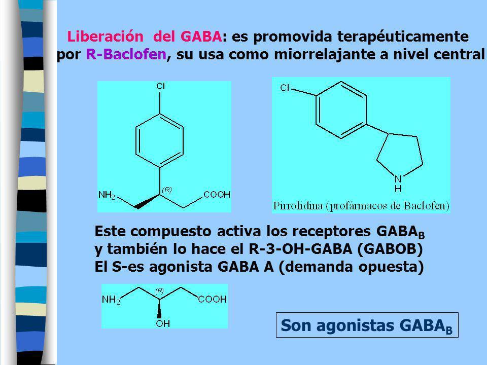 Son agonistas GABAB Liberación del GABA: es promovida terapéuticamente