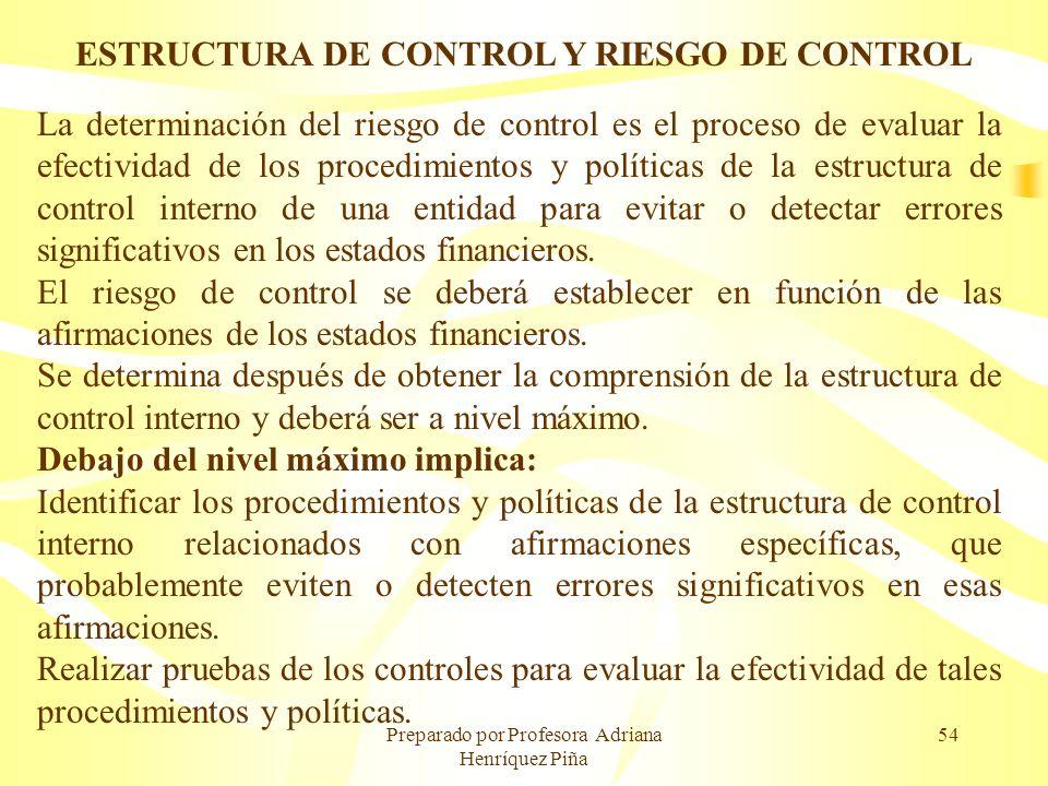 ESTRUCTURA DE CONTROL Y RIESGO DE CONTROL