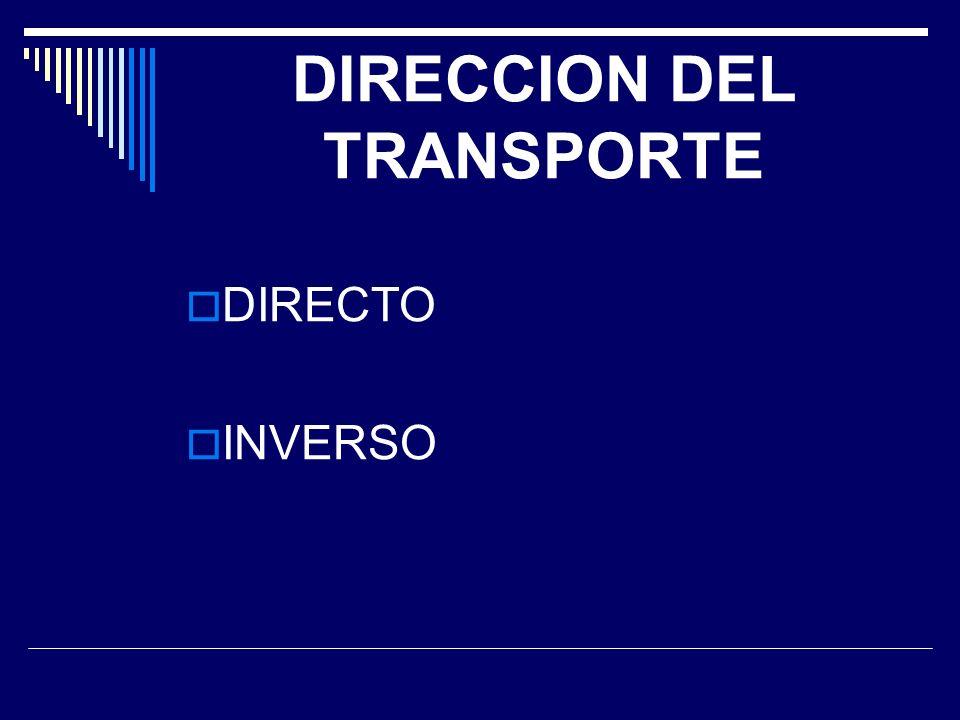DIRECCION DEL TRANSPORTE
