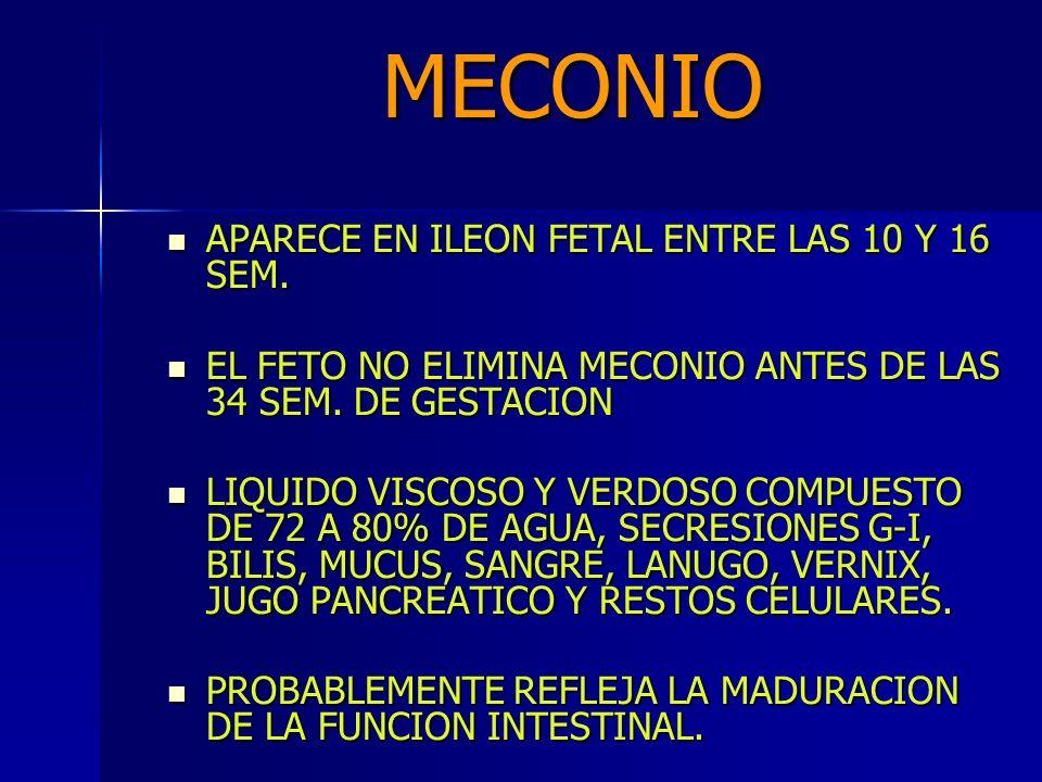 MECONIO APARECE EN ILEON FETAL ENTRE LAS 10 Y 16 SEM.