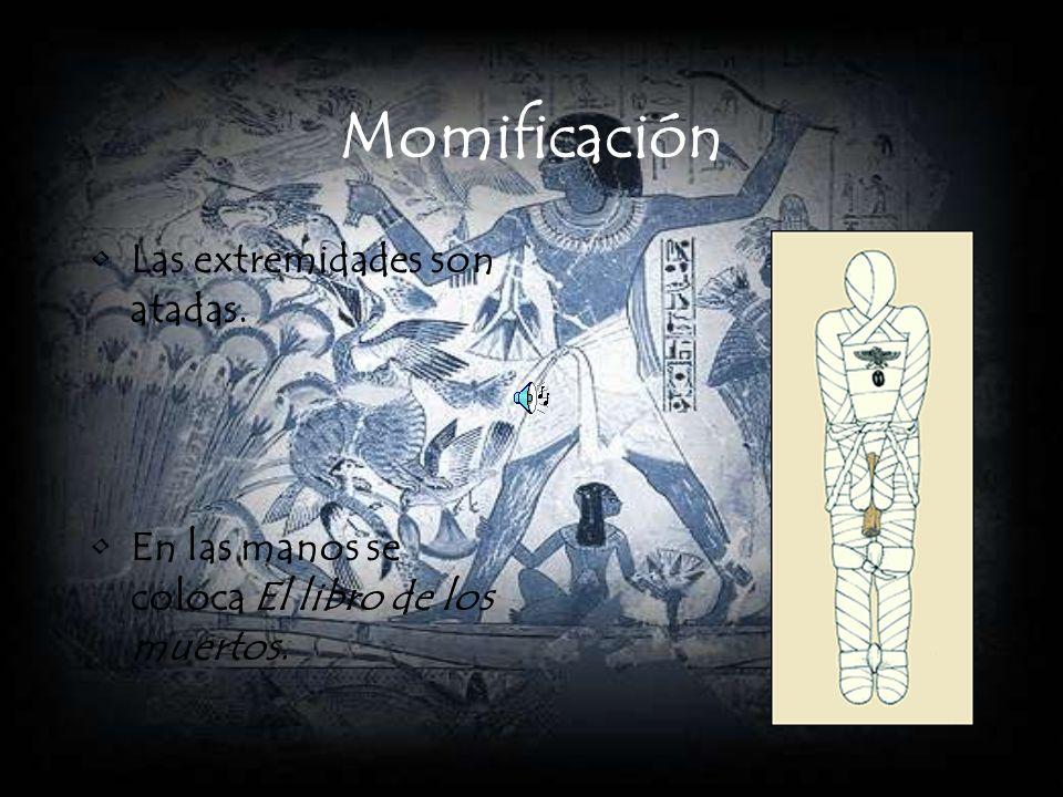 Momificación Las extremidades son atadas.