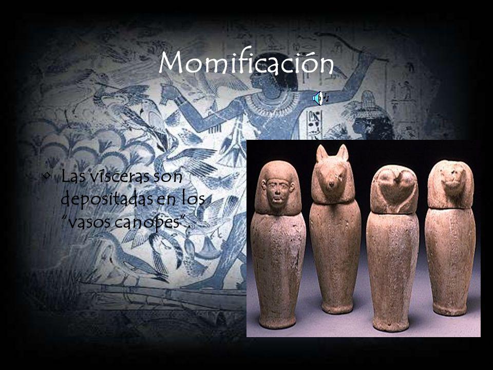 Momificación Las vísceras son depositadas en los vasos canopes .