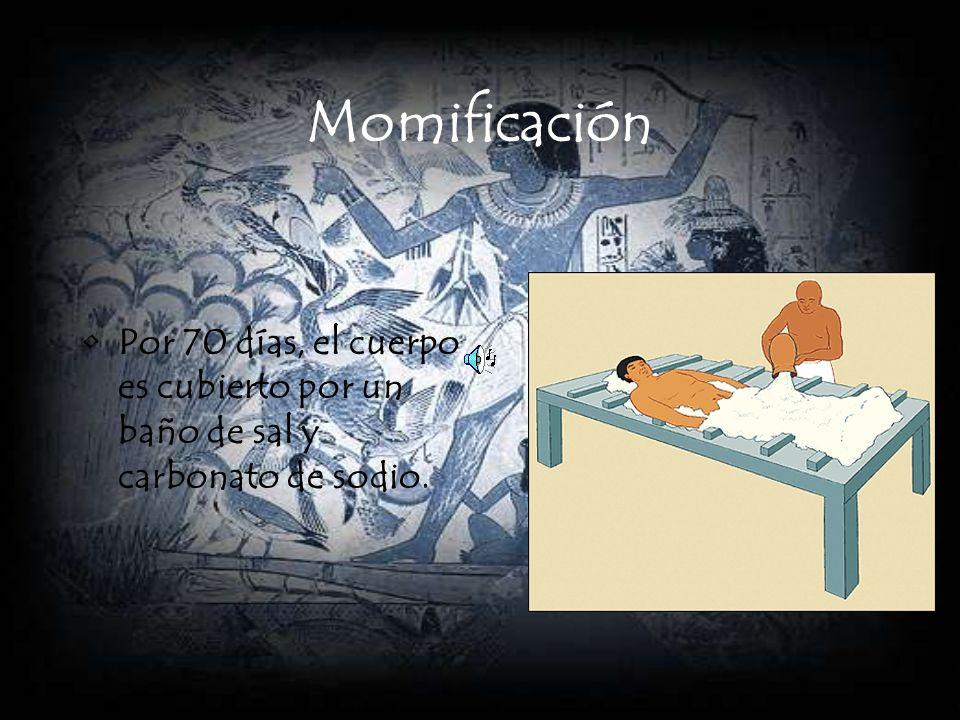 Momificación Por 70 días, el cuerpo es cubierto por un baño de sal y carbonato de sodio.