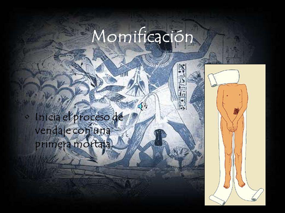Momificación Inicia el proceso de vendaje con una primera mortaja.