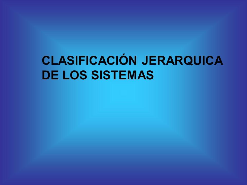 CLASIFICACIÓN JERARQUICA