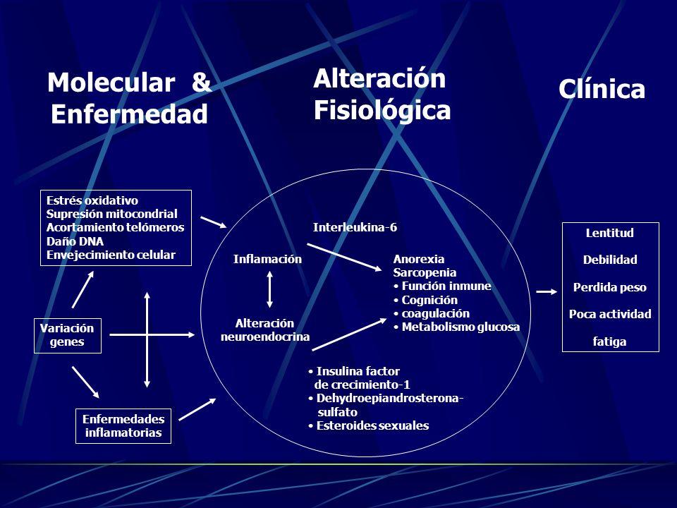 Molecular & Enfermedad