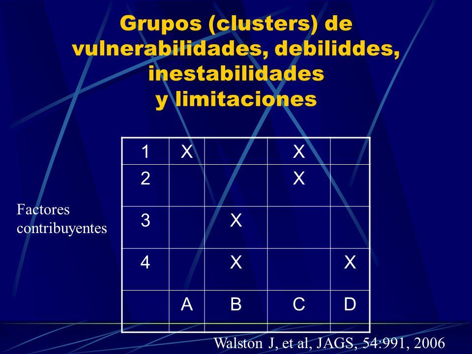 Grupos (clusters) de vulnerabilidades, debiliddes, inestabilidades y limitaciones