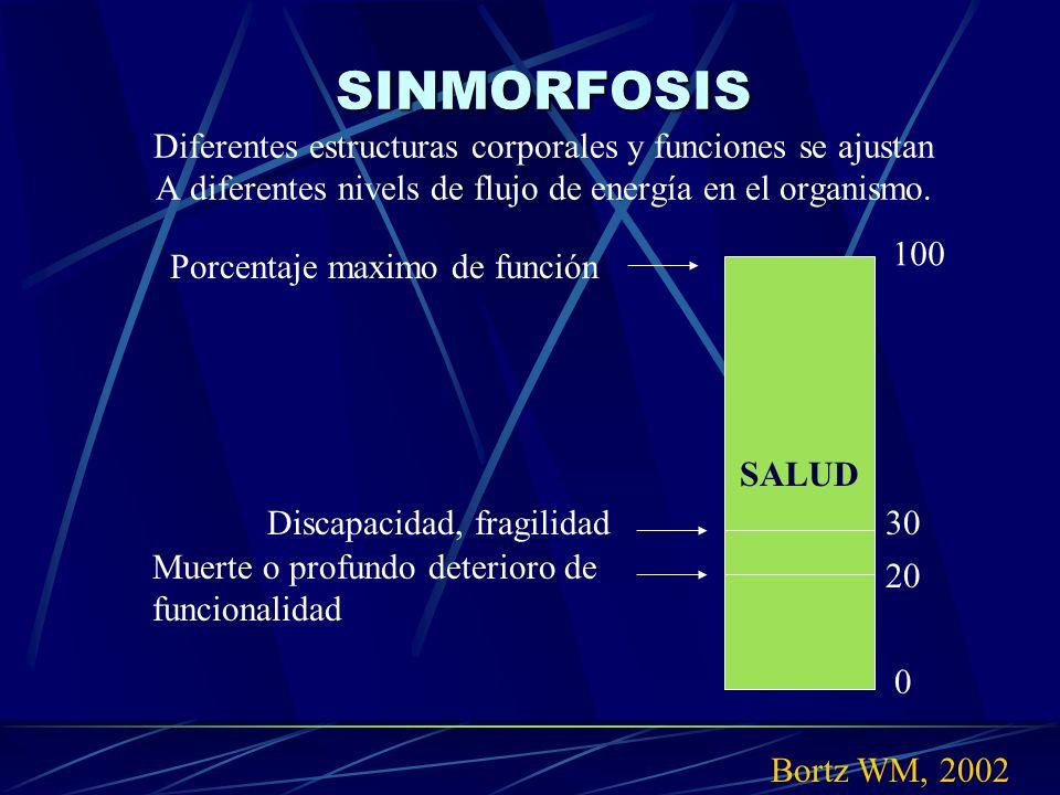 SINMORFOSIS Diferentes estructuras corporales y funciones se ajustan A diferentes nivels de flujo de energía en el organismo.