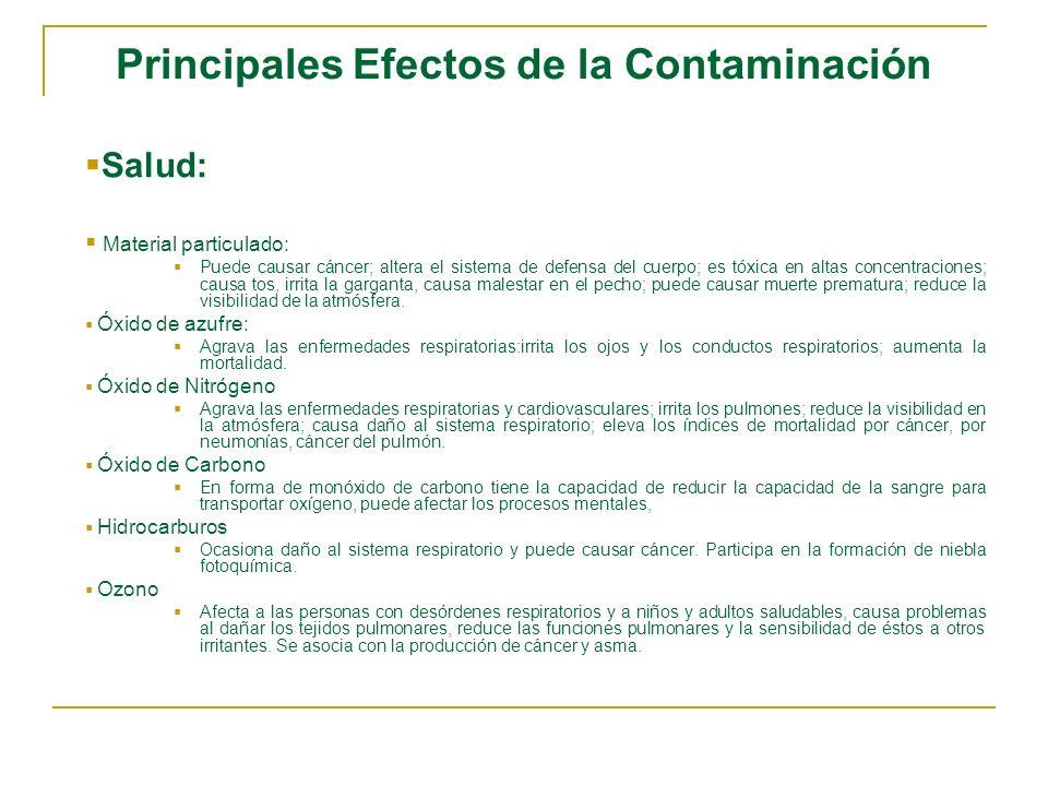 Principales Efectos de la Contaminación
