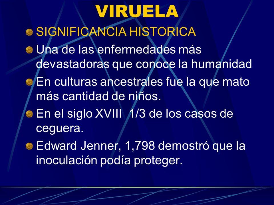VIRUELA SIGNIFICANCIA HISTORICA
