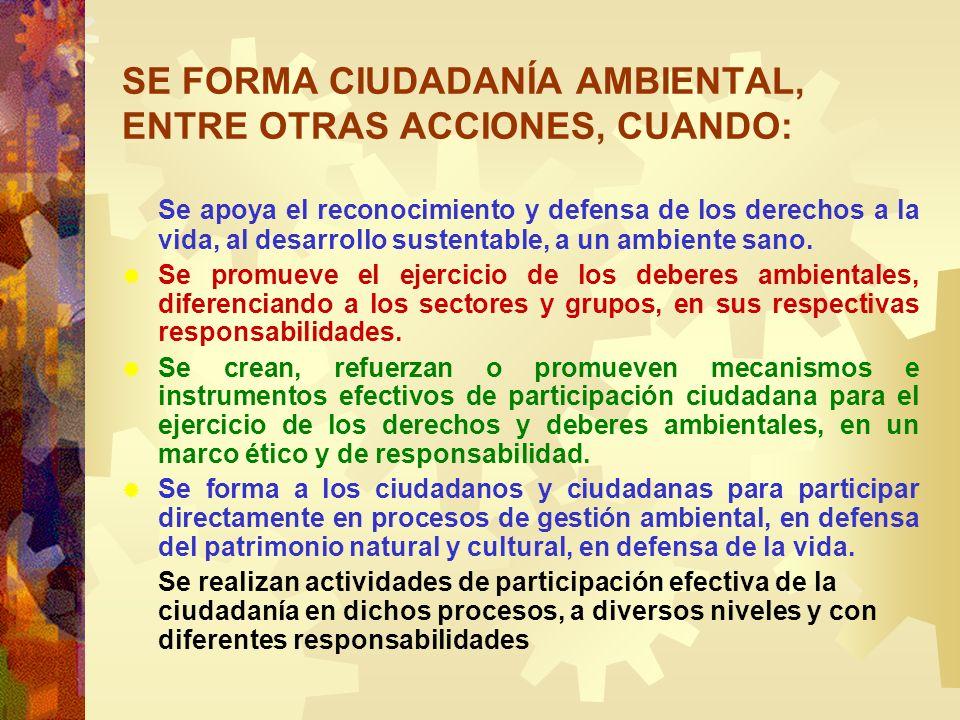 SE FORMA CIUDADANÍA AMBIENTAL, ENTRE OTRAS ACCIONES, CUANDO: