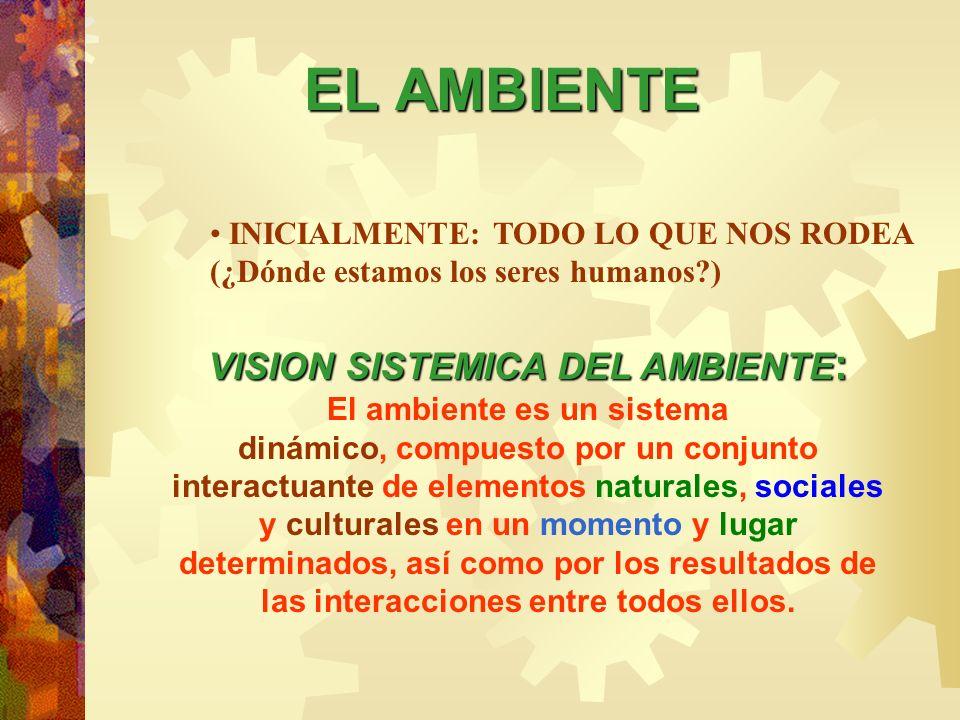 VISION SISTEMICA DEL AMBIENTE: El ambiente es un sistema
