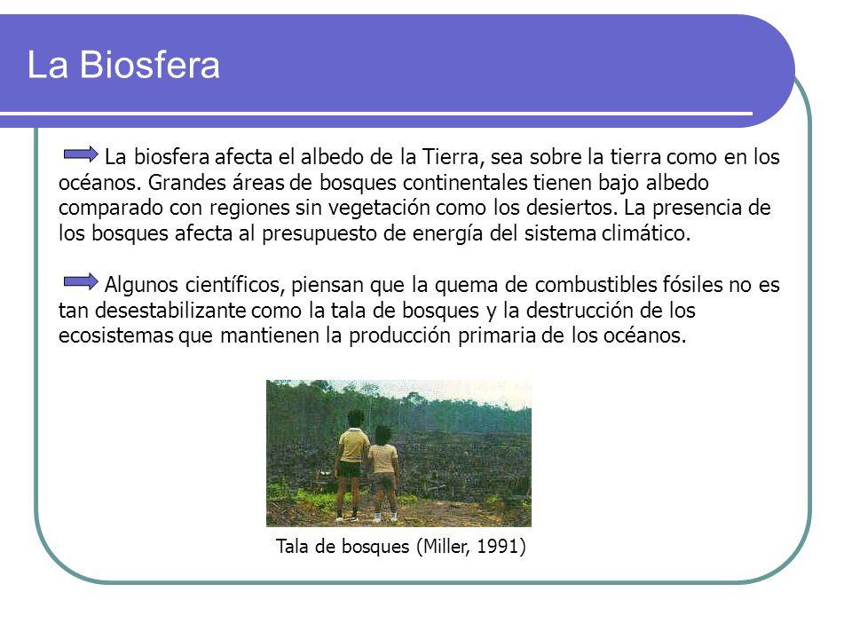Tala de bosques (Miller, 1991)
